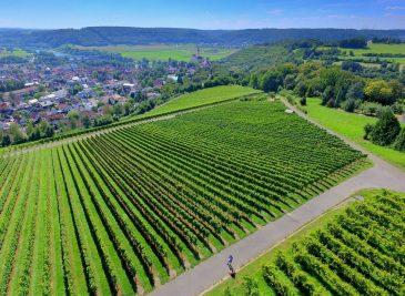 avances tecnológicos agricultura