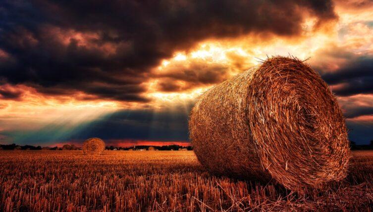 maquinaria agricola mas conocida